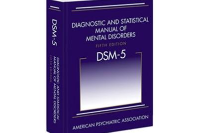 DSM Book